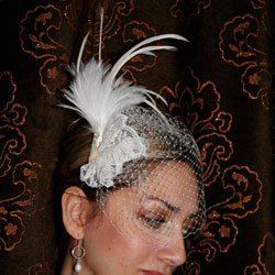 Ivory Bridal Birdcage Veil