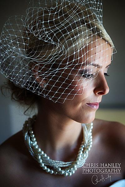 Sophie ivory birdcage veil